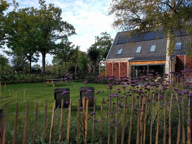 Natuurlijke tuin onnen tuinontwerp groningen friesland for Tuinontwerp natuurlijke tuin