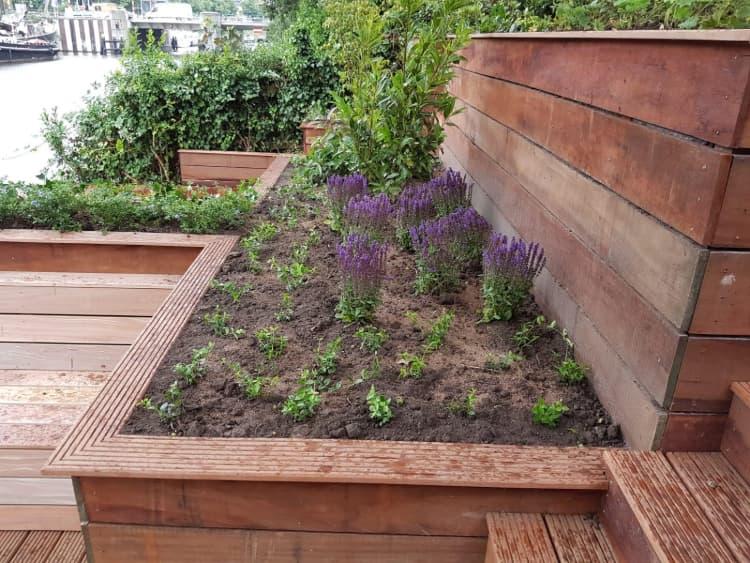 klassieke-strakke-tuin-groningen-3