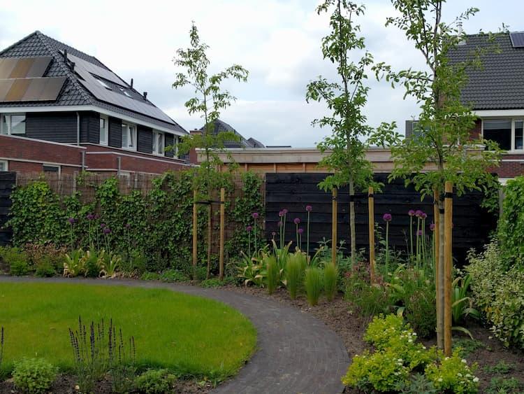 natuurlijke-nieuwbouwtuin-Haren-11