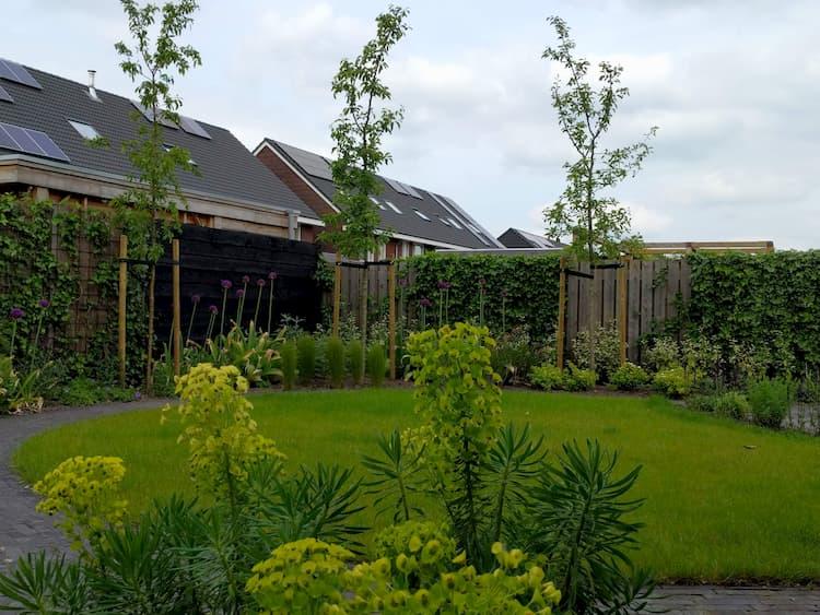 natuurlijke-nieuwbouwtuin-Haren-9