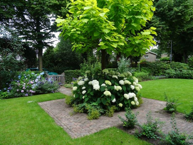 natuurlijke-tuin-haren-10