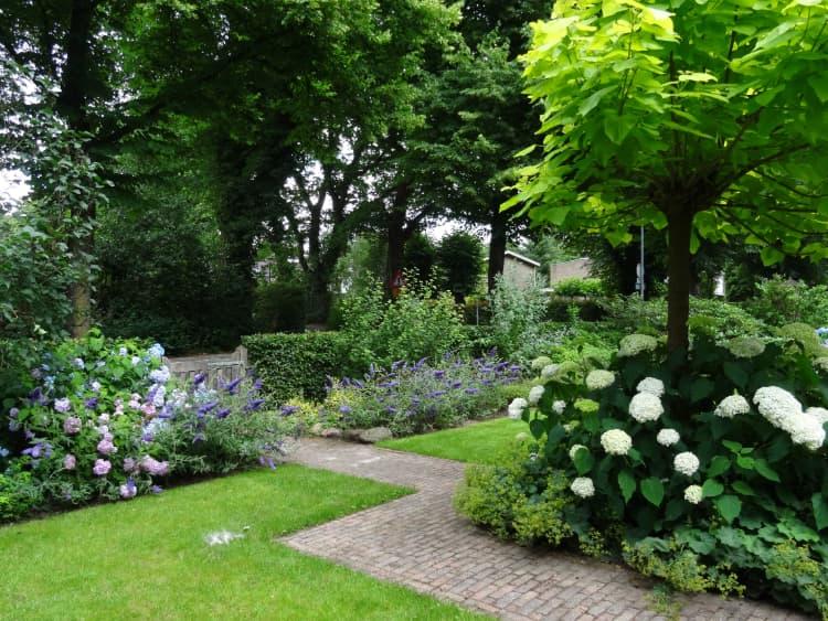 natuurlijke-tuin-haren-9