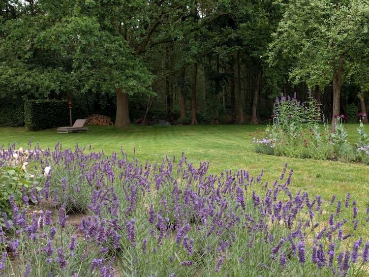 Natuurlijke tuin Jonkersvaart
