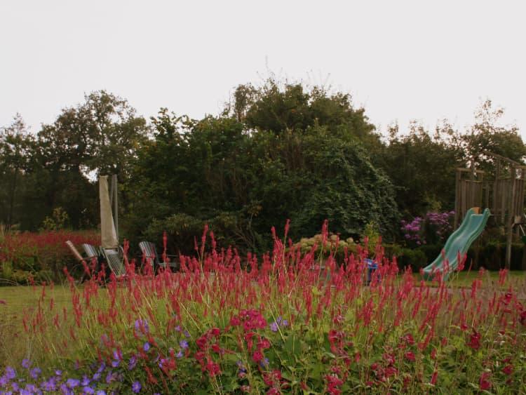 natuurlijke-tuin-oudemolen-5