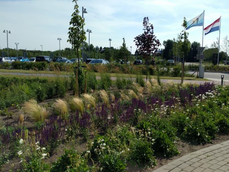 natuurlijke-tuin-van-der-valk-hoogkerk-5