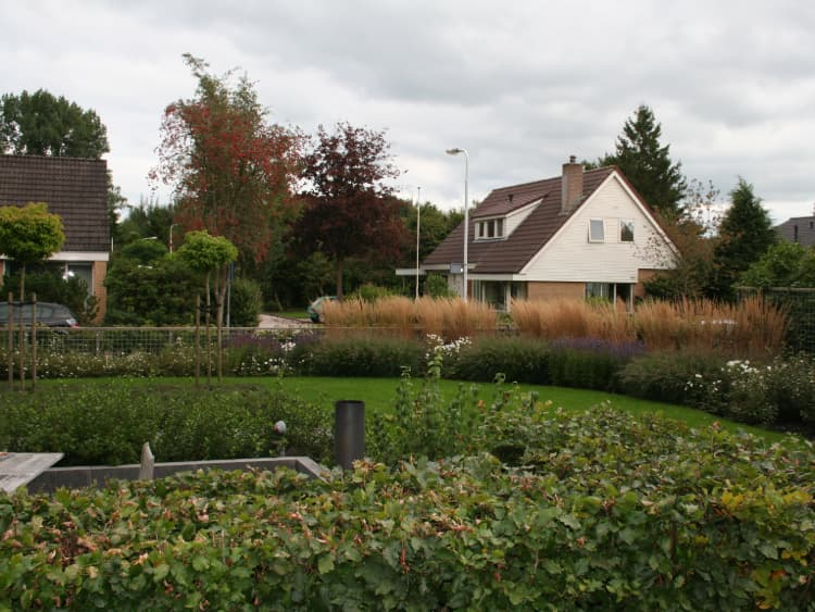 onderhoudsarme-tuin-drachten-2