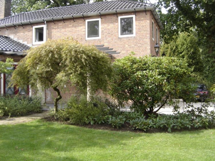 stijlvolle-tuin-haren-3